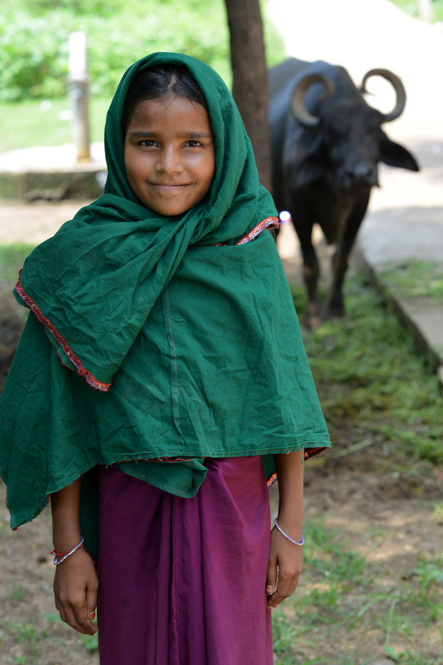 Young girls get the responsibility of taking care of live stock and therefore some don't go to school for this reason or drop out from school under family pressure.<br /> <br /> Educate Girls, founded in 2007, is a non-governmental organization that holistically tackles issues at the root of gender inequality in India's educational system. A comprehensive model reforms government schools through community ownership and ensures full enrollment, higher attendance and improved learning outcomes for all girls.