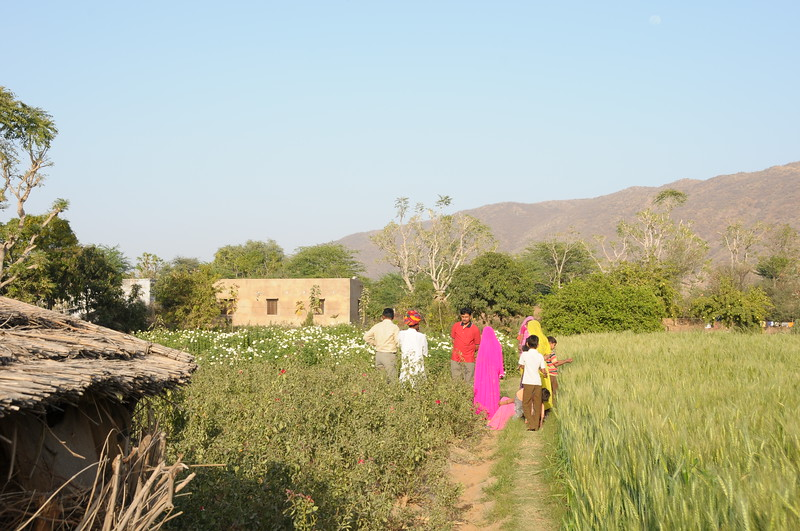 Mobile phone use in Rural Rajasthan (Village near Pushkar): Family members of Sayar Singh, Chamunda Matha Road, Pushkar, Rajasthan, India.