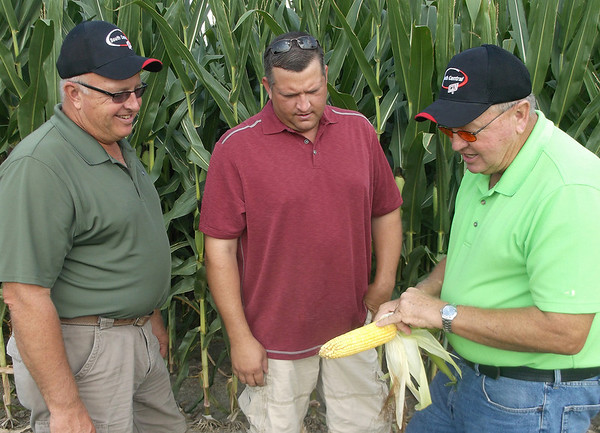 From left: Calvin, Todd and Gary Wachtel, co-owners of Wachtel Farms, look and discuss the development of one of their crops.