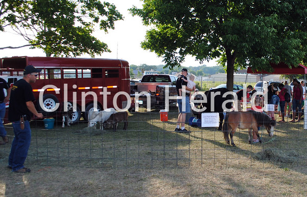 A petting zoo was one of several attractions at the Juneteenth celebration at Riverview Park Band Shell on Friday. • Natalie Conrad/Clinton Herald