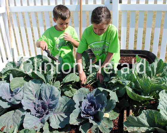 """Carter and Elizabeth Cupp add mulch to plants in the Hy-Vee garden. They helped their grandfather, Ken Shook, who came from the Quad-Cities on June 19 to speak about mulching to YWCA Summer Camp students participating in the """"Grow a Garden - Hy-Vee Little Gardeners"""" program. • Samantha Pidde/Clinton Herald"""
