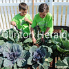 "Carter and Elizabeth Cupp add mulch to plants in the Hy-Vee garden. They helped their grandfather, Ken Shook, who came from the Quad-Cities on June 19 to speak about mulching to YWCA Summer Camp students participating in the ""Grow a Garden - Hy-Vee Little Gardeners"" program. • Samantha Pidde/Clinton Herald"