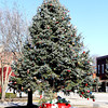 Gary Hissong donated a Colorado Blue Spruce that has been on display on Main Street in St. Elmo over the holidays. The tree was uprooted by the tornado that hit near St. Elmo on Nov. 17. The tree, which he planted in 1984 on his property near St. Elmo, was unable to be replanted after being blown over. Hissong's property was largely unaffected by the tornado except some damage to several trees and some siding on his house.