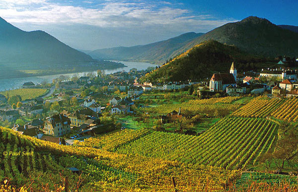 [AUSTRIA.NIEDER 03600] 'Vineyards around Spitz.'  The Wachau is seen by many as the most beautiful part of the Danube. Indeed, it's hard to find a more romantic landscape between source and Black Sea. It's on the list of UNESCO World Heritage Sites. In the eastern part, from Spitz to Krems, wine rules. If you have the chance, visit the region in autumn. Everything is gold and you can see the grape pickers at work. Photo Paul Smit.