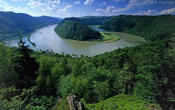 [AUSTRIA.OBER 04195] 'Schlögener Schlinge.'  After cycling, walking is the most popular activity along the Danube. For instance at the Donau-Höhen-Rundwanderweg (Danube Hills Path) between Passau and Linz. Favourite spot for a break is the viewpoint above the rivers's largest loop near Schlögen, nicely called Schlögener Schlinge. Photo Paul Smit.