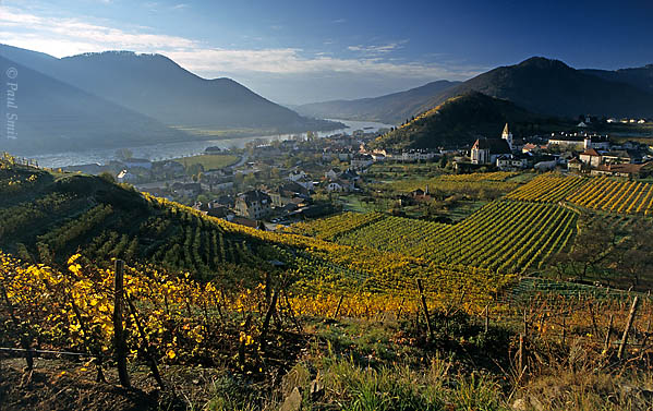 [AUSTRIA.NIEDER 03607] 'Vineyards around Spitz.'  The Wachau is seen by many as the most beautiful part of the Danube. Indeed, it's hard to find a more romantic landscape between source and Black Sea. It's on the list of UNESCO World Heritage Sites. In the eastern part, from Spitz to Krems, wine rules. If you have the chance, visit the region in autumn. Everything is gold and you can see the grape pickers at work. Photo Paul Smit.
