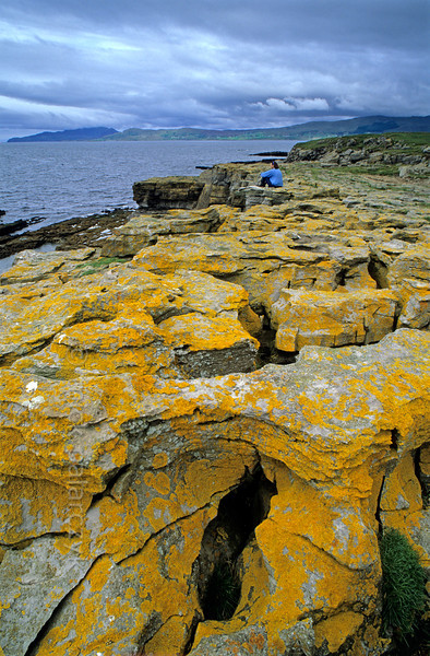 [IRELAND.DONEGAL 21.774] 'St. John's Point.'  	Yellow lichens cover the eroded limestone cliffs at St. John's Point, a nice spot to look out over McSwyne's Bay and the Atlantic Ocean. Photo Mick Palarczyk.