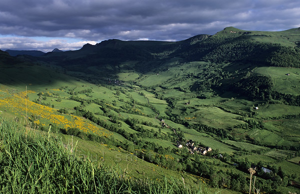 [FRANCE.AUVERGNE 28921] 'Vallée de la Maronne.'  Landscape with pastures and hedges in the Vallée de la Maronne, one of the western radial valleys in the Monts du Cantal. Photo Paul Smit.