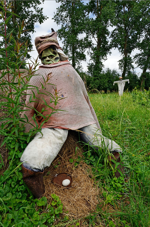 [FRANCE. ATLANTIC 30026] 'Scarecrows near Arçais.'