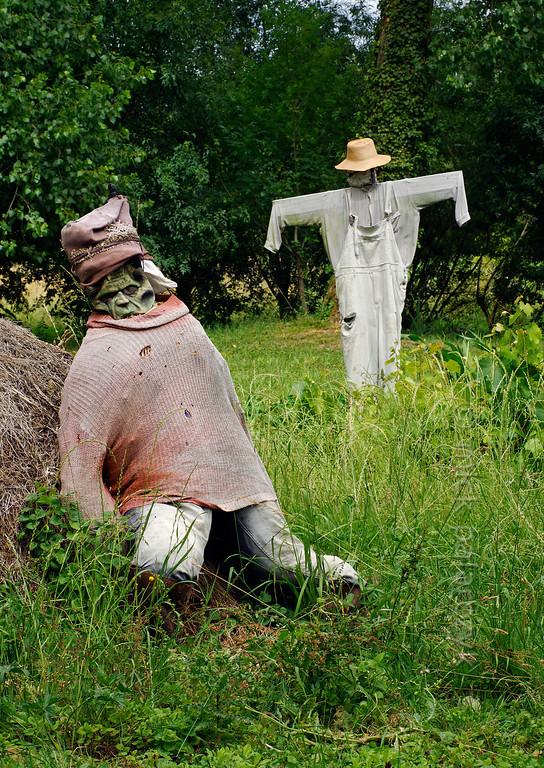 [FRANCE. ATLANTIC 30027] 'Scarecrows near Arçais.'