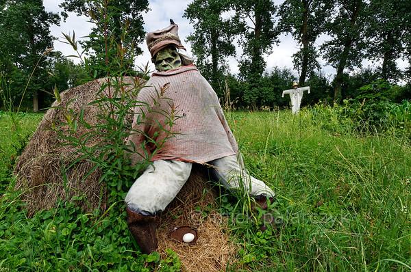 [FRANCE. ATLANTIC 30025] 'Scarecrows near Arçais.'