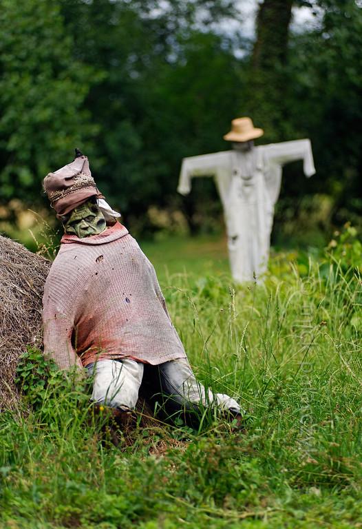 [FRANCE. ATLANTIC 30028] 'Scarecrows near Arçais.'