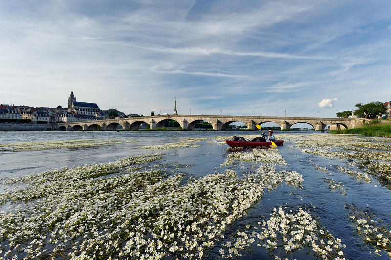 [FRANCE.LOIRE 10819]