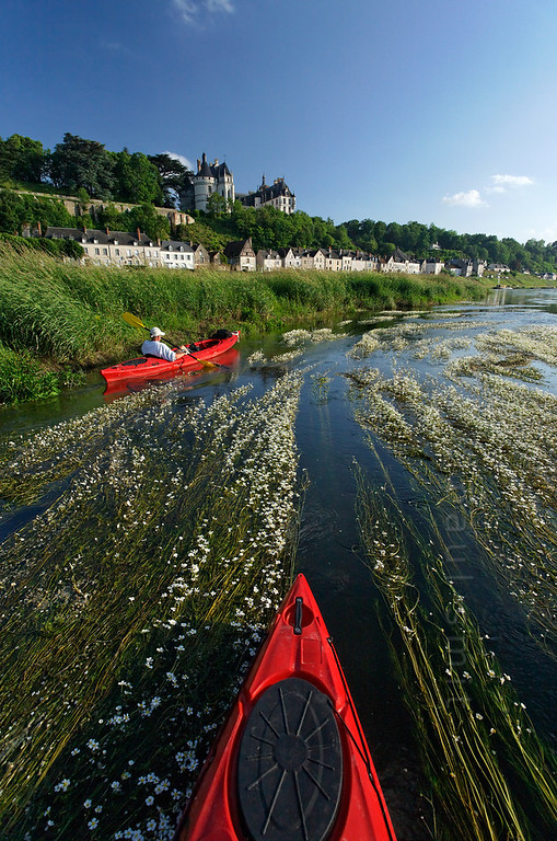 [FRANCE.LOIRE 10823] 'Chaumont's Castle seen from a paddler's perspective.'  The 15th century castle of Chaumont-sur-Loire looks down on a paddler navigating the loire between Blois and Amboise. Locally the river is covered by large patches of flowering River Water-crowfoot (Ranunculus fluitans; NL: Vlottende waterranonkel). Rooted in the riverbed, it produces strands of up to 6 meters in length, that are stretched out in the direction of the current. Photo Paul Smit.
