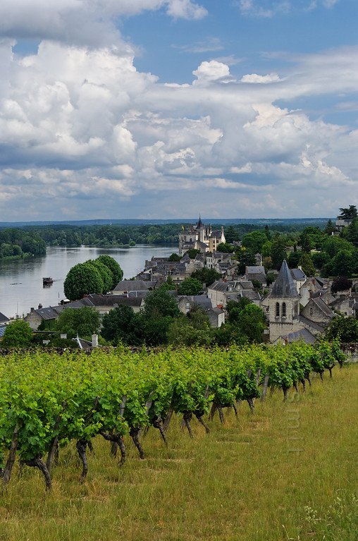 [FRANCE.LOIRE 10855] 'Village and castle of Montsoreau.'  	Surrounded by wine-hills the village and medieval castle of Montsoreau lie just downstream of the confluence of Loire and Vienne. Photo Paul Smit.