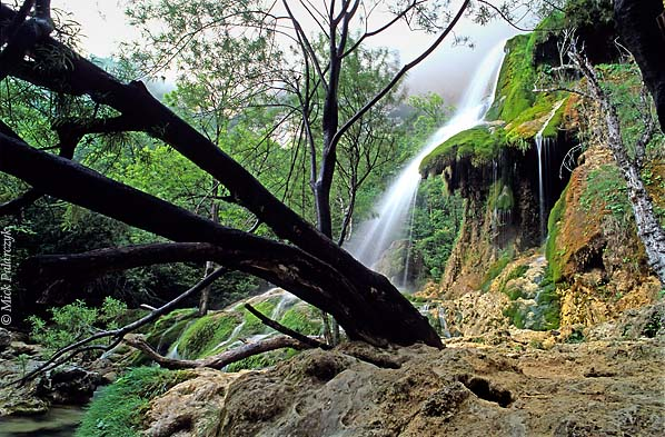 [FRANCE.ALPSNORTH 24.446] 'Waterfall of Choranche-2.'  Near Choranche a waterfall descends the steep northern side of the Bourne Canyon. The chalky water has formed umbrella-shaped limestone accretions that are overgrown by mosses. Photo Mick Palarczyk.