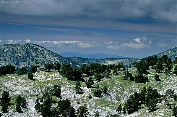 [FRANCE.ALPSNORTH 24.473] 'White plateau-2.'  On the Hauts Plateaux du Vercors, the southern highest part of the Vercors, even in summer the uninhabited plateau seems to be covered by snow. It is the eroded limestone which covers the surface for large tracts. There are no roads that cross this splendid nature reserve. Photo Mick Palarczyk.