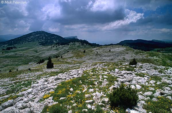 [FRANCE.ALPSNORTH 24.520] 'Hauts Plateaux du Vercors-1.'  	The Hauts Plateaux du Vercors, the southern highest part of the Vercors, is a wild place without villages or roads. Photo Mick Palarczyk.