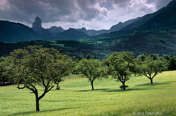 [FRANCE.ALPSNORTH 24.529] 'Aiguille seen from Trièves-1.'  Seen from a cornfield with nut trees near the village of Roissard in the Trièves, the Mont Aiguille, on the eastern edge of the Vercors massif, has the appearance of a thin column. Photo Mick Palarczyk.