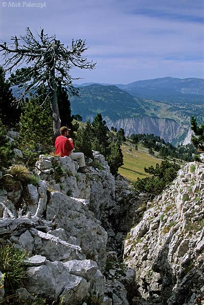 [FRANCE.ALPSNORTH 24.496] 'Eroded plateau.'  At the eastern edge of the Hauts Plateaux du Vercors, near the Rochers du Parquet, the limestone plateau of the Vercors is cut by erosion gullies. Photo Mick Palarczyk.