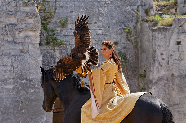 "[FRANCE.PROVENCE 10662] 'Falconry.'  During the summer, some medieval events are organized in the castle of Les Baux-de-Provence. These include demonstrations of falconry in which not only falcons perform, but owls, eagles and other birds of prey as well. The leading act is performed by a medieval ""princess"", who is in perfect unity with her horse. The castle, which nowadays is a large complex of ruins, was once the seat of the noble Des Baux family, who became Counts of Orange in 1173 and Princes of Orange in 1181. Photo Paul Smit."