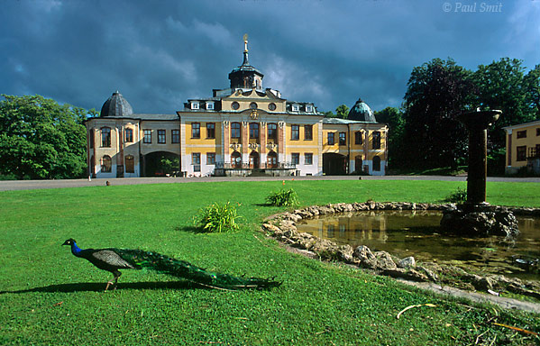 [GERMANY.THUERINGEN 36]  'Schloss and Park Belvedere, Weimar.'  Just outside Weimar is Schloss Belvedere, where Goethe left his marks once again as he helped transform the baroque gardens into an English landscape park. Proud peacocks are its symbol. Photo Paul Smit.