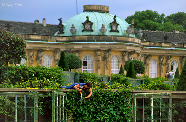 [GERMANY.BRANDENBURG 12]  'Schloss and Park Sanssouci, Potsdam.'  Gardener working in the terraced vineyard of the baroque Sanssouci palace, french for free of worries. Behind the glass doors you can recognize figs.This garden is the heart of the much larger, 290 ha Sanssouci Park, that itself is just the centerpiece of a whole chain of parks, gardens and palaces. Friedrich der Große (Frederick the Great) and generations of Prussian kings after him had these parks constructed along the banks of the Havel, a river that widens into an idyllic lake every few kilometers. The park landscape starts at Werder and reaches, via Potsdam, deep into Berlin. In the past the Glienicker Bridge, famous for its exchange of spies, divided this area. Since the German unification you can enjoy it as a whole and it has become a UNESCO World Heritage site. Photo Paul Smit.