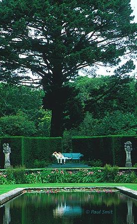 [BRITAIN.WALES 2415] 'Bodnant Garden.' In Bodnant Garden, Conwy Valley, Snowdonia. Photo Paul Smit.