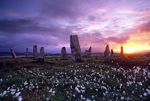 [BRITAIN.HEBRIDES 27686] 'Stone circle of Callanish III.'  On the shore of East Loch Roag, an estuary along the north coast of Lewis, you can find several neolithic stone circles. This one, surrounded by the white plumes of common cottongrass is called Callanish III. It is less spectacular than the better known primary circle at Callanish I, but still offers a mystic experience during sunset. Photo Mick Palarczyk.