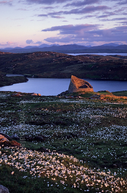 [BRITAIN.HEBRIDES 27703] 'Broch of Dun Carloway.'  	Surrounded by the white plumes of common cottongrass the broch of Dun Carloway on the northern shore of the Isle of Lewis catches the last rays of the setting sun. This broch was probably built in the 1st century BC. It has a hollow wall with the remains of a staircase inside. Brochs were tower-like buildings and may have had defensive purposes, but their exact function is still unclear. Photo Mick Palarczyk.