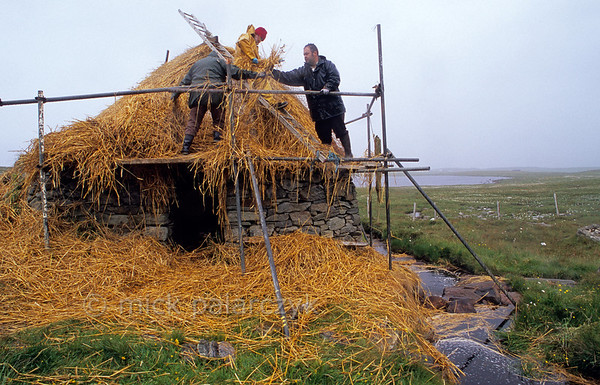 "[BRITAIN.HEBRIDES 27712] 'Shawbost watermill.'  	Near Shawbost, on the northern coast of the Isle of Lewis, James Crawford (with red cap) and his family are re-thatching a two hundred year old watermill. The cornmill was used by local farmers into the 1930s. Its horizontal paddle wheel is housed in the stone structure beneath the thatched roof. These mills are generally called ""Norse"", an adjective given in the 19th century when people erroneously thought they were a remnant of the Viking occupation of the Hebrides. Photo Mick Palarczyk."