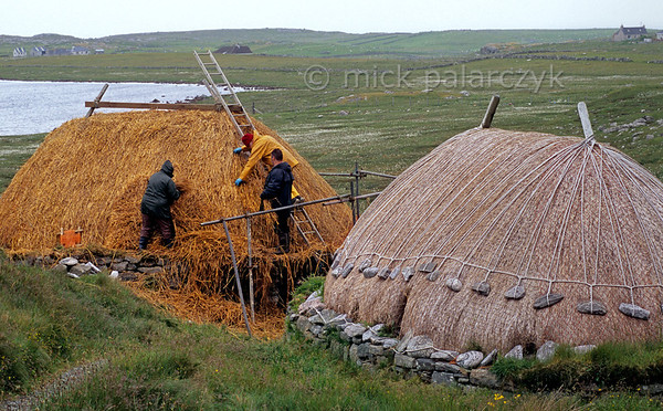 [BRITAIN.HEBRIDES 27714] 'Shawbost watermill and kiln.'  	Near Shawbost, on the northern coast of the Isle of Lewis, James Crawford (with red cap) and his family are re-thatching a two hundred year old watermill. The cornmill was used by local farmers into the 1930s. Its horizontal paddle wheel is housed in the stone structure beneath the thatched roof. To the right of the mill stands the kiln where the grain was dried prior to milling. The thatched roofs of the buildings are protected against wind damage by netting and ropes held in place by anker stones. Photo Mick Palarczyk.