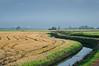 HOLLAND.FRIESLAND 30256] 'Windmill east of Ferwerd'.