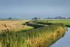 HOLLAND.FRIESLAND 30257] 'Windmill east of Ferwerd'.