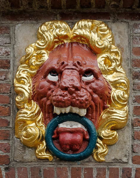 [HOLLAND.FRIESLAND 30170] 'Lion in Balk.'