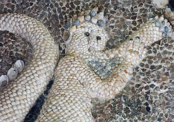 [HOLLAND.GRONINGEN 29482] 'Detail in shell grotto at Leek.'  	The interior of a garden-house on the Nienoord Estate near the village of Leek has been decorated with mosaics of mollusks around 1700 AD by Italian craftsmen. This figure (probably an angel) is largely filled out with local Dutch shells but elsewhere tropical specimens have been used. Photo Mick Palarczyk.