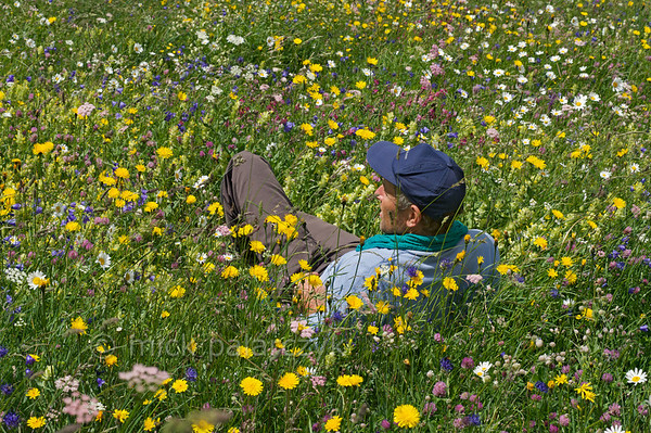 Man lying in field of flowers.