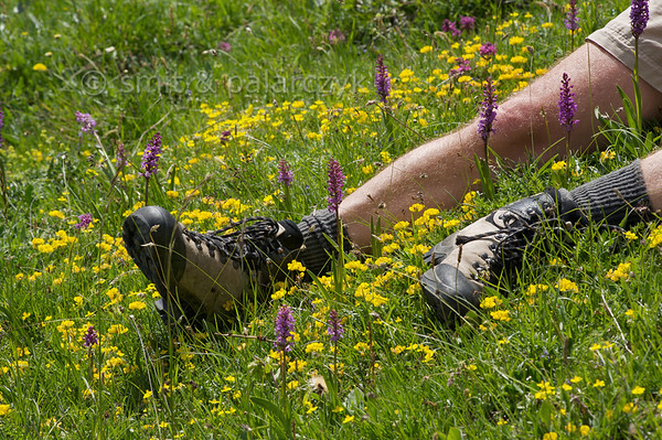 Hiker having a break among flowers.