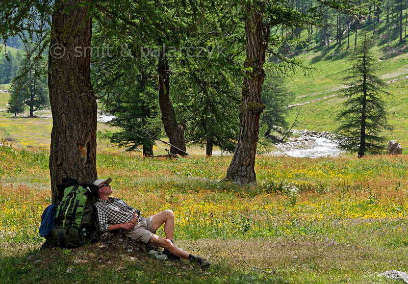 Hiker having a break in an Alpine pasture.