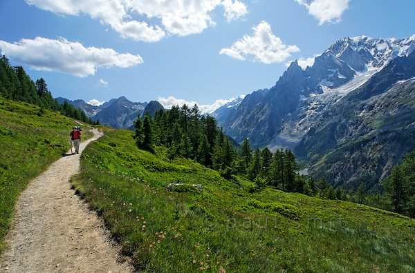 Tour du Mont Blanc trail with Mont Blanc.