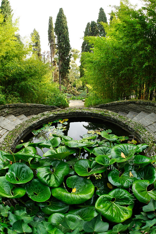 [ITALY.LIGURIA 29001]