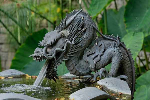 [ITALY.LIGURIA 29004] 'Dragon Fountain in Hanbury Gardens'.'  	Dragon Fountain in the Hanbury Botanical Gardens. The Japanese bronze was bought by Thomas Hanbury from an antique dealer in Kyoto. The Hanbury Botanical Gardens were created in 1867 when Sir Thomas Hanbury, holidaying on the Côte d'Azur , was struck by the beauty of Cape Mortola, near Ventimiglia, and began to purchase , piece by piece, part of the land which later amounted to eighteen hectares. Photo Paul Smit.