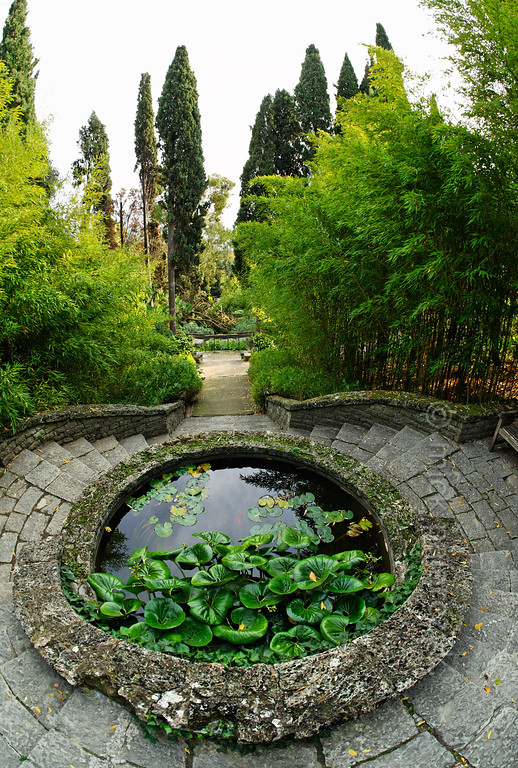 [ITALY.LIGURIA 29000] 'Pond in Hanbury Gardens'.'  	Pond in the Hanbury Botanical Gardens, located on the Côte d'Azur near Ventimiglia. Photo Mick Palarczyk.