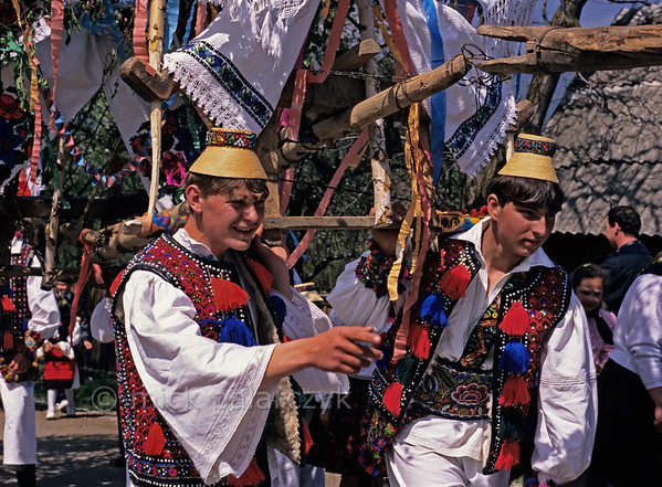 [ROMANIA.MARAMURES 23.879] 'Yoked celebration.'  	In Hoteni during the 'Festival of the First Ploughman' (Tinjaua) the farmer who was the first to plough his spring field is honoured with a procession in which decorated yokes are carried around the village. Photo Mick Palarczyk.