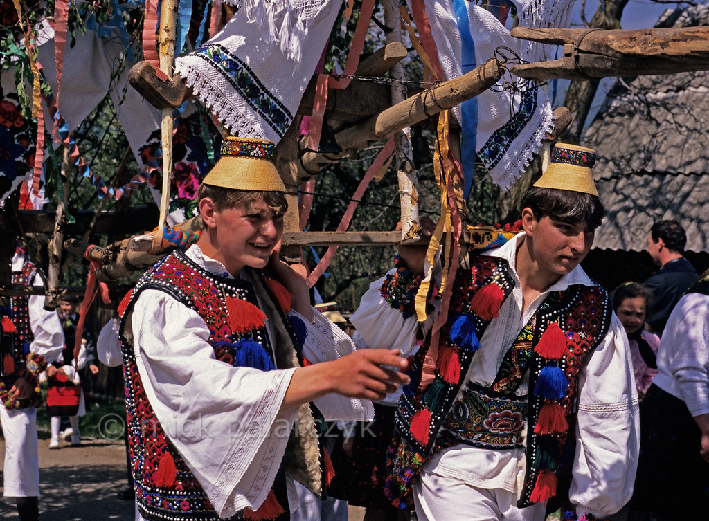 [ROMANIA.MARAMURES 23.879] 'Yoked celebration.'