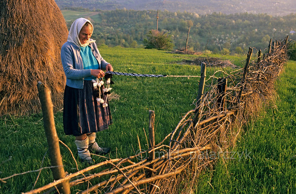 [ROMANIA.MARAMURES 23.655] 'Warm feet.'  Warmed by 'opinchi', shoes made after a medieval design, shepherd Ileana Petran is braiding a new woolen belt for her shoulder bag. Photo Mick Palarczyk.