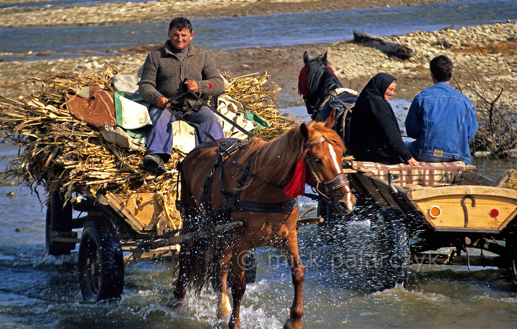 [ROMANIA.MOLDAVIA 24.025] 'Crossing the river.'  Returning from the market at Gura Humorului a farmer crosses a tributary of the Moldova River. Photo Mick Palarczyk.