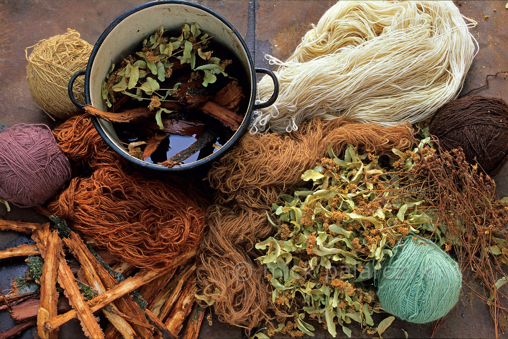 [ROMANIA.MARAMURES 23.761] 'Nature's colours.'  In Botiza women use pigments extracted from plants, flowers and bark to colour their wool. Preferably the pigments of summer flowers are used, because the spring-pigments contain to much water. Photo Mick Palarczyk.