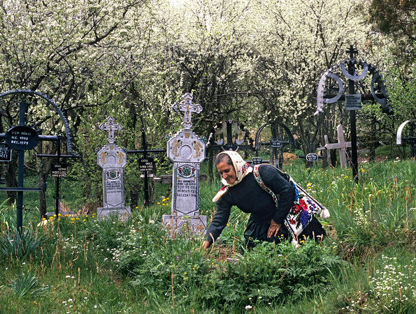 [ROMANIA.MARAMURES 23.660] 'Weeding a grave.'  A villager of Sîrbi clears a grave of weeds. Photo Mick Palarczyk.