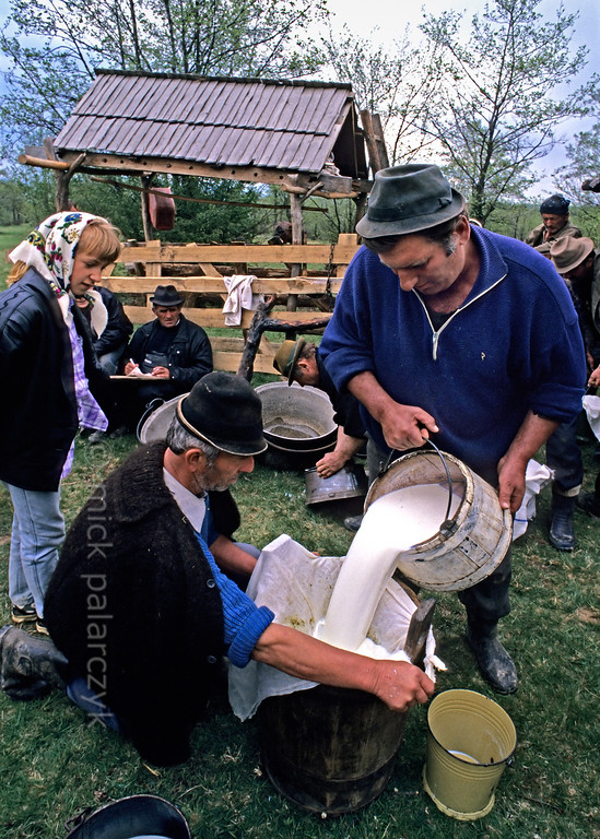 [ROMANIA.MARAMURES 23.862] 'Filtering the milk.'